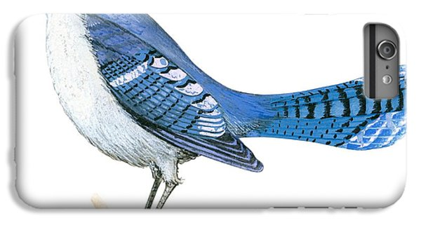 Bluejay iPhone 6 Plus Case - Blue Jay  by Anonymous