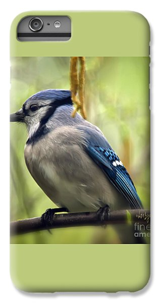 Blue Jay On A Misty Spring Day - Square Format IPhone 6 Plus Case by Lois Bryan