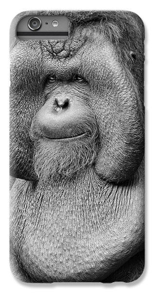 Bornean Orangutan IIi IPhone 6 Plus Case by Lourry Legarde