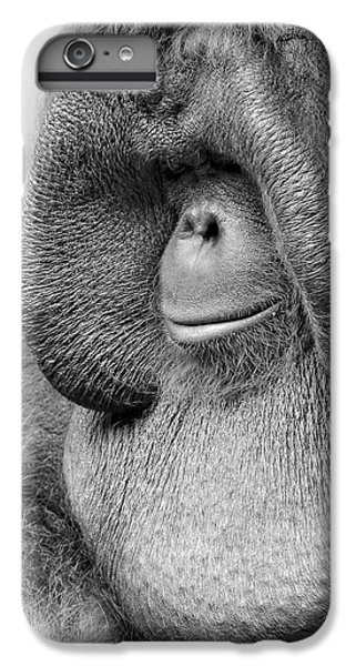 Bornean Orangutan V IPhone 6 Plus Case by Lourry Legarde