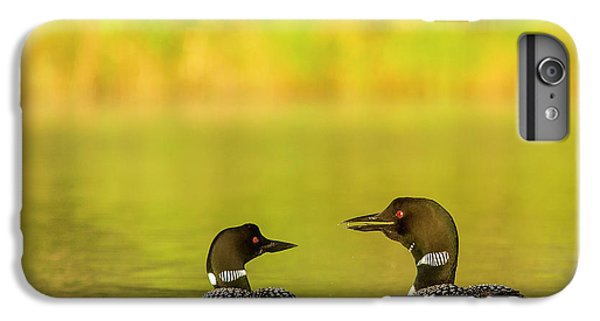 Loon iPhone 6 Plus Case - Breeding Pair Of Common Loons by Chuck Haney