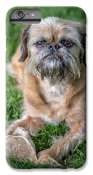 Brussels Griffon IPhone 6 Plus Case by Edward Fielding