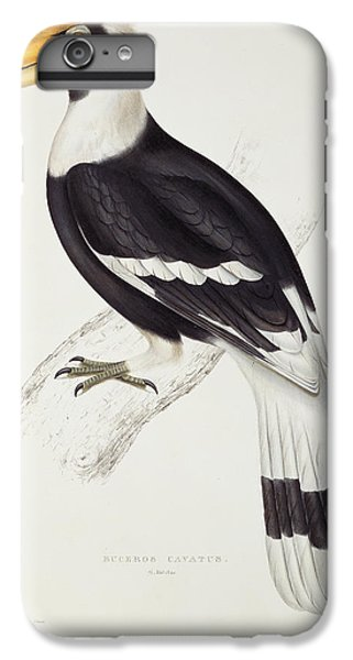 Great Hornbill IPhone 6 Plus Case by John Gould