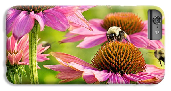 Bumbling Bees IPhone 6 Plus Case by Bill Pevlor