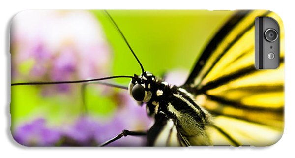 Butterfly IPhone 6 Plus Case by Sebastian Musial