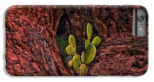 Cactus Dwelling IPhone 6 Plus Case by Mark Myhaver
