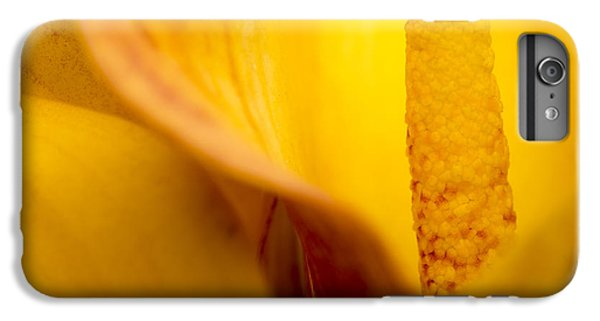 IPhone 6 Plus Case featuring the photograph Calla Lily by Sebastian Musial