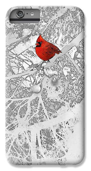 Cardinal In Winter IPhone 6 Plus Case