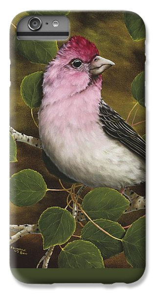 Cassins Finch IPhone 6 Plus Case by Rick Bainbridge
