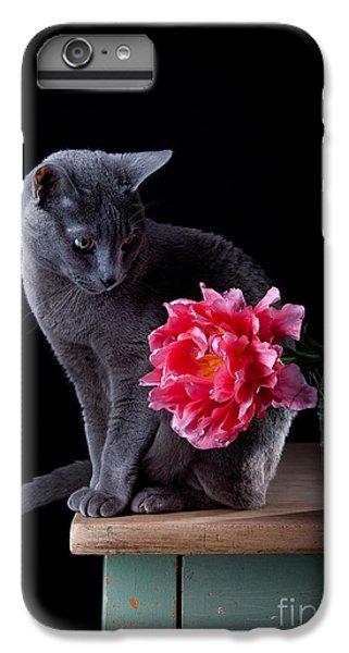 Tulip iPhone 6 Plus Case - Cat And Tulip by Nailia Schwarz