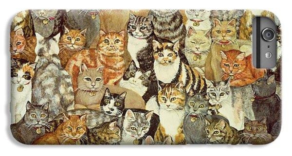Cat Spread IPhone 6 Plus Case