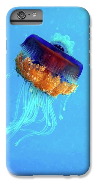 Cauliflower Jellyfish IPhone 6 Plus Case by Louise Murray