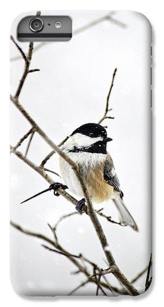 Charming Winter Chickadee IPhone 6 Plus Case