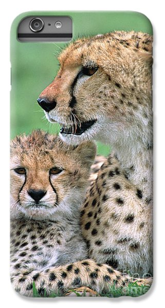 Cheetah Mother And Cub IPhone 6 Plus Case by Yva Momatiuk John Eastcott