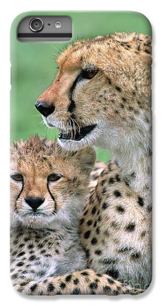 Cheetah Mother And Cub IPhone 6 Plus Case by Yva Momatiuk John Eastcott