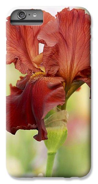 Garden iPhone 6 Plus Case - Chelsea Iris by Rona Black
