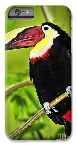 Toucan iPhone 6 Plus Case - Chestnut Mandibled Toucan by Elena Elisseeva