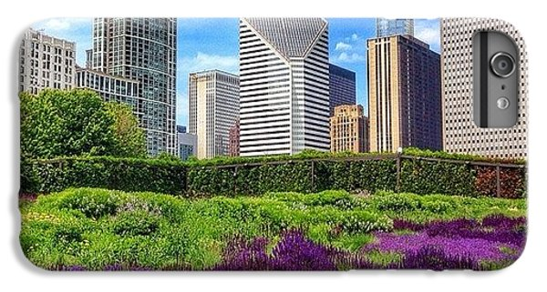 Chicago Skyline At Lurie Garden IPhone 6 Plus Case