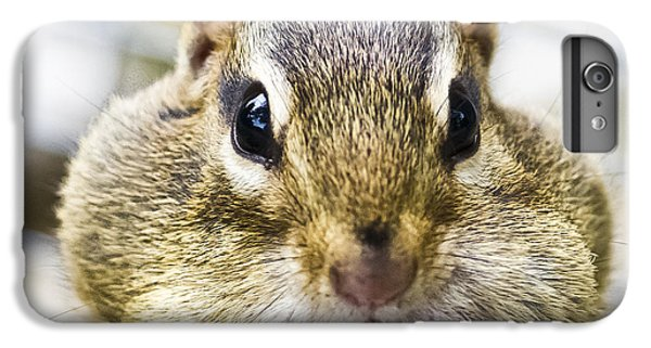 IPhone 6 Plus Case featuring the photograph Chipmunk With It's Mouth Full Bong by Ricky L Jones