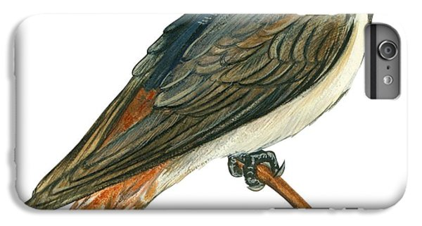 Cliff Swallow  IPhone 6 Plus Case by Anonymous