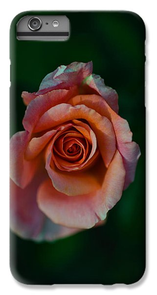Close-up Of A Pink Rose, Beverly Hills IPhone 6 Plus Case