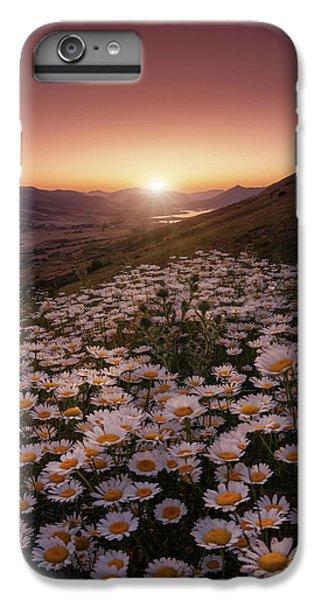 Daisy iPhone 6 Plus Case - Closer To The Sun by Sergio Abevilla