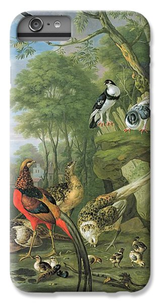 Magpies iPhone 6 Plus Case - Cock Pheasant Hen Pheasant And Chicks And Other Birds In A Classical Landscape by Pieter Casteels
