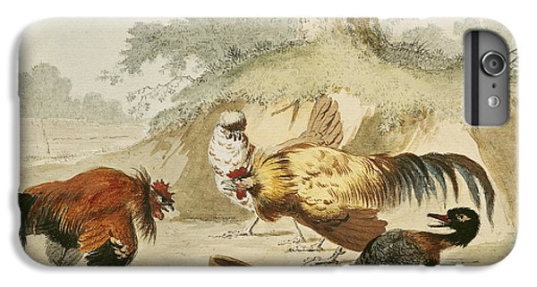Cocks Fighting IPhone 6 Plus Case by Melchior de Hondecoeter