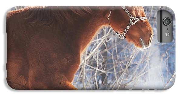 Horse iPhone 6 Plus Case - Cold by Carrie Ann Grippo-Pike