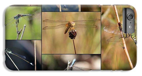 Collage Marsh Life IPhone 6 Plus Case