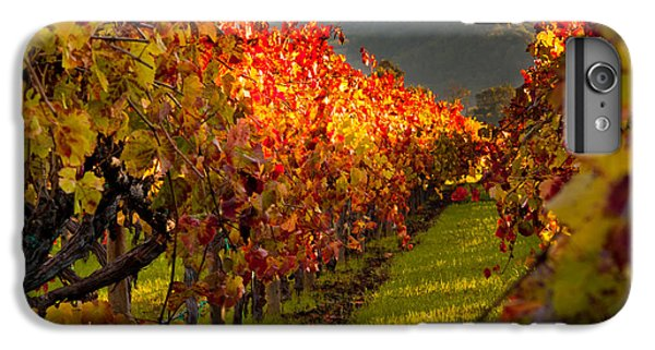 Color On The Vine IPhone 6 Plus Case