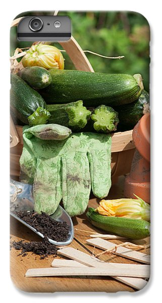 Courgette Basket With Garden Tools IPhone 6 Plus Case