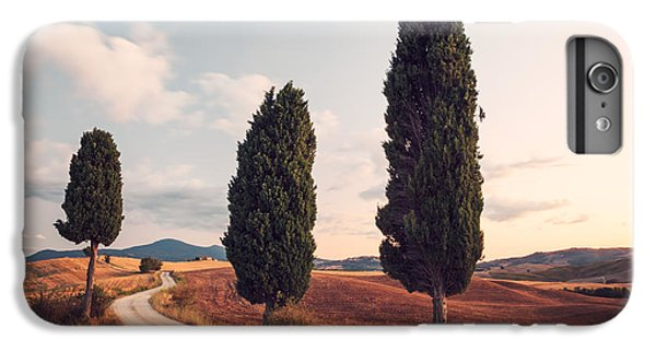 Cypress Lined Road In Tuscany IPhone 6 Plus Case by Matteo Colombo
