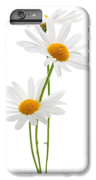 Daisies On White Background IPhone 6 Plus Case by Elena Elisseeva