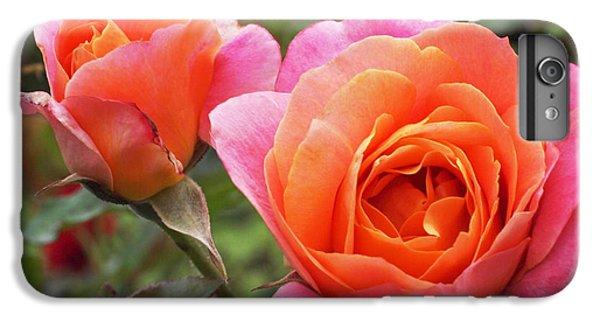 Disneyland Roses IPhone 6 Plus Case