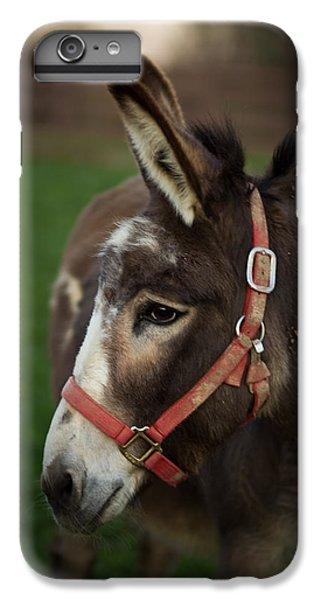Donkey IPhone 6 Plus Case by Shane Holsclaw