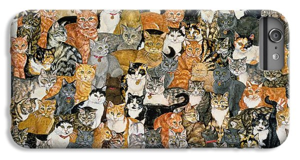 Double Cat Spread IPhone 6 Plus Case