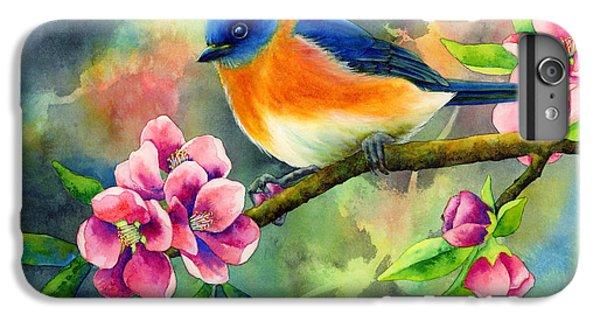 Bluebird iPhone 6 Plus Case - Eastern Bluebird by Hailey E Herrera