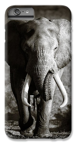 Wildlife iPhone 6 Plus Case - Elephant Bull by Johan Swanepoel