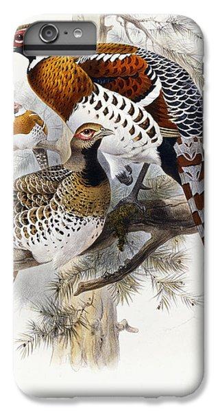 Elliot's Pheasant IPhone 6 Plus Case by Joseph Wolf