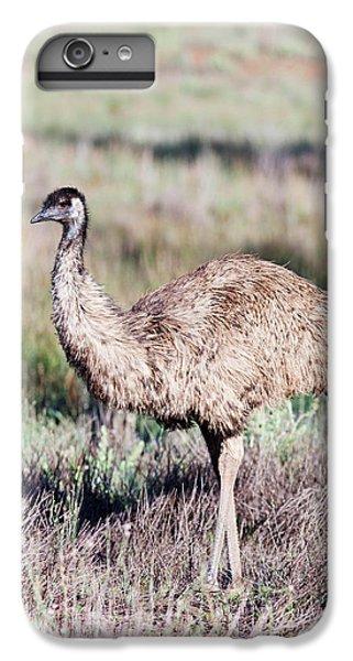 Emu (dromaius Novaehollandiae IPhone 6 Plus Case by Martin Zwick