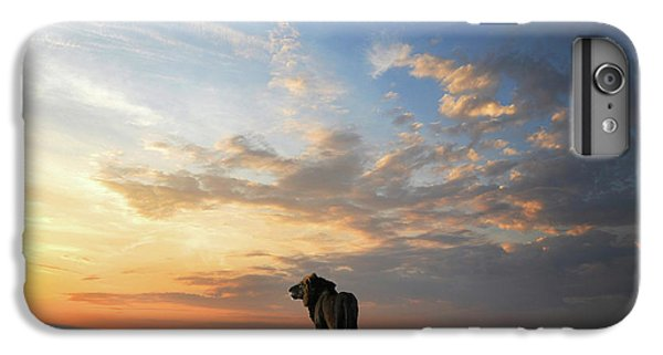 Lion iPhone 6 Plus Case - End Of The Day by Bjorn Persson