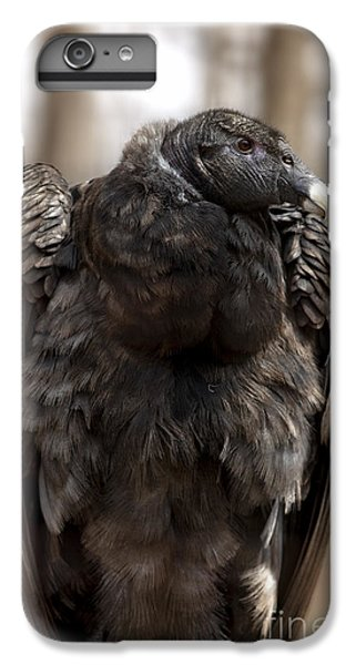 Condor iPhone 6 Plus Case - Endangered Andean Condor by Brandon Alms
