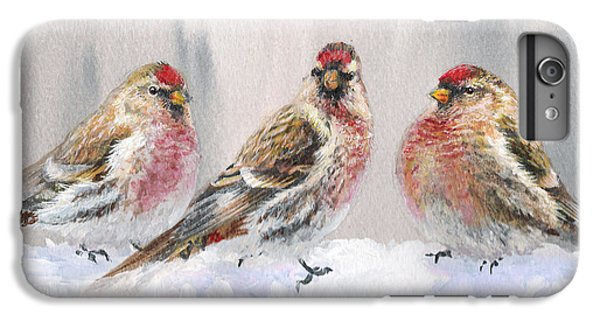 Snowy Birds - Eyeing The Feeder 2 Alaskan Redpolls In Winter Scene IPhone 6 Plus Case by Karen Whitworth