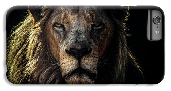 Lion iPhone 6 Plus Case - Face To Face by Jackson Carvalho