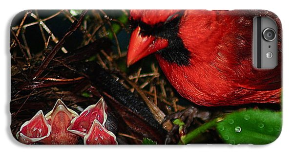 Bluejay iPhone 6 Plus Case - Feed Me Daddy by Frozen in Time Fine Art Photography