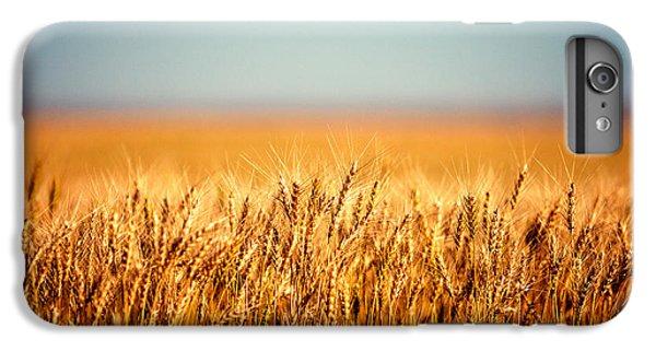 Rural Scenes iPhone 6 Plus Case - Field Of Wheat by Todd Klassy