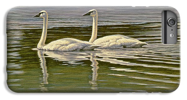 Swan iPhone 6 Plus Case - First Open Water - Trumpeters by Paul Krapf