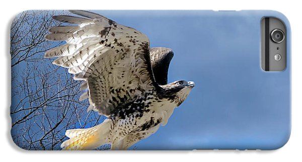 Flight Of The Red Tail IPhone 6 Plus Case