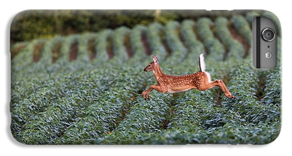 Deer iPhone 6 Plus Case - Flight Of The White-tailed Deer by Everet Regal
